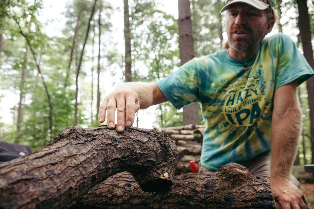Sierra Nevada employee Mike Somich touching the bark of a mushroom log
