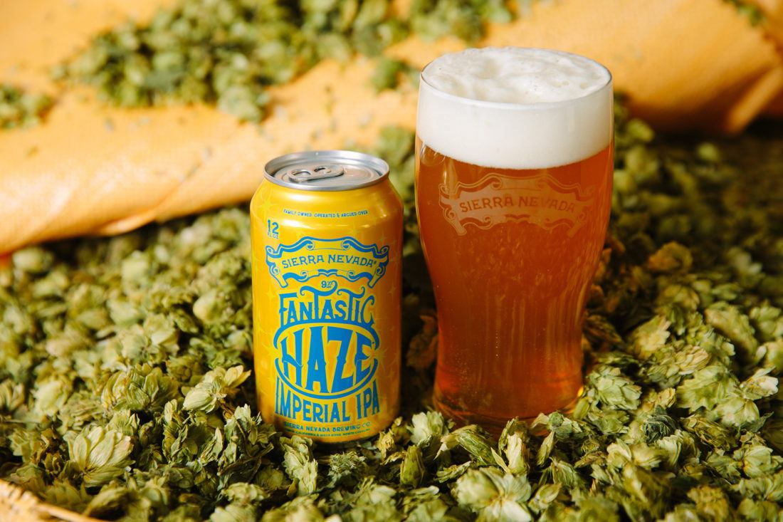 A can of Sierra Nevada Fantastic Haze IPA next to a full glass of beer, surrounded by hops.
