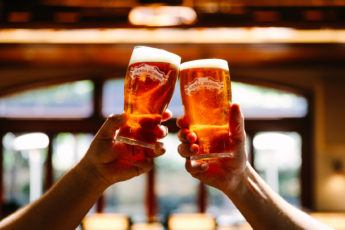 The hands of two people, raising their beer glasses in a toast