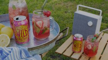 A backyard picnic featuring cans of Wild Little Thing Slightly Sour Ale