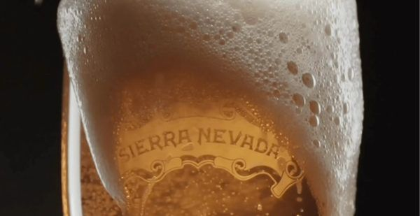 Close-up of a Sierra Nevada beer foaming down a glass